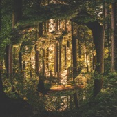 Golden Dandelions (Acoustic) artwork