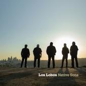 Los Lobos - Love Special Delivery