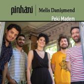 Peki Madem (feat. Melis Danişmend) [Single]