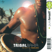 Pure Brazil: The Best of Timbalada