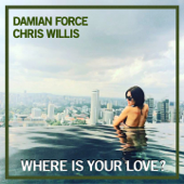 Where Is Your Love (feat. Chris Willis)