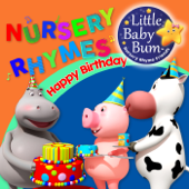 Happy Birthday Little Baby Bum Nursery Rhyme Friends - Little Baby Bum Nursery Rhyme Friends