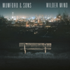 Mumford & Sons - Wilder Mind (Deluxe) artwork