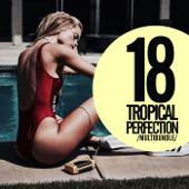 18 Tropical Perfection Multibundle