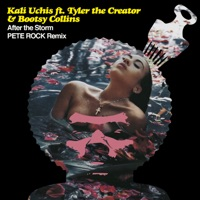 After the Storm (feat. Tyler, The Creator & Bootsy Collins) [Pete Rock Remix] - Single Mp3 Download
