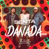 Senta Danada - Zé Felipe & Os Barões da Pisadinha mp3