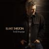 Blake Shelton - Minimum Wage  artwork