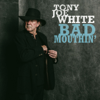 Tony Joe White - Bad Mouthin'  artwork