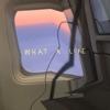 Scarlet Pleasure - What a Life artwork