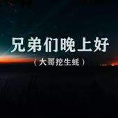 [Download] 兄弟们晚上好(大哥挖生蚝) MP3