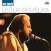 Lešek Semelka - Jsi Prostě Nejlepší artwork