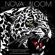 Heavy Hitter - Nova Bloom