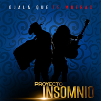 Proyecto Insomnio - Ojalá Que Te Mueras artwork