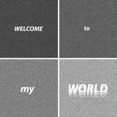 Welcome To My World-Eric Dylan