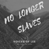 No Longer Slaves - Voices of Lee