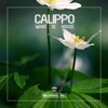 What Is House - Single, Calippo