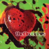 The Breeders - Divine Hammer