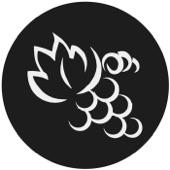 vine church fl by vine church fl on apple podcasts New Apple Technology vine church fl