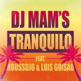 Tranquilo (feat. Houssdjo & Luis Guisao) [Radio Edit] - Single