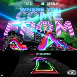 Where You Come From (feat. DJ Luke Nasty) - Single Mp3 Download