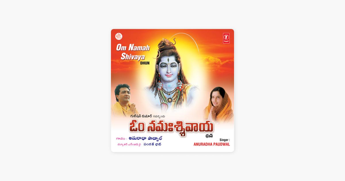 Om Namah Shivaya (Dhun) by Anuradha Paudwal & Pankaj Bhatt