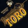 25 Aniversario Grandes Éxitos feat Banda El Recodo de Cruz Lizarraga