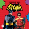 Batman: The Complete Series wiki, synopsis