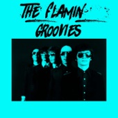 The Flamin' Groovies - I Can't Hide