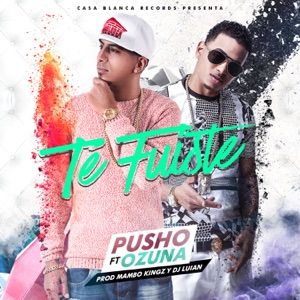 Te Fuiste (feat. Ozuna) - Single Mp3 Download