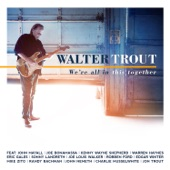 Walter Trout - Mr. Davis (feat. Robben Ford)