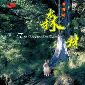 台灣的森林