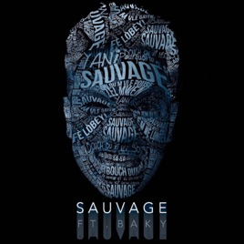 sauvage yani martelly