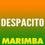 Despacito (Marimba Remix) - The Marimba Squad