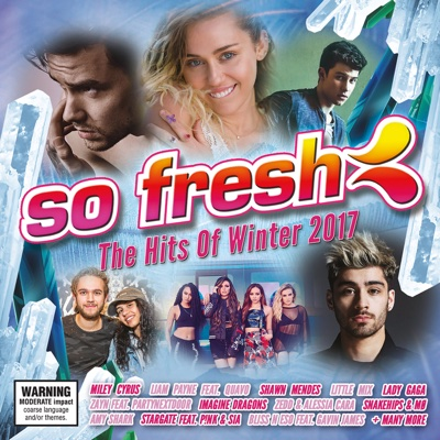 So Fresh: The Hits of Winter 2017