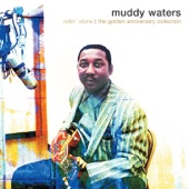 Muddy Waters - Where's My Woman Been (feat. Sunnyland Slim)
