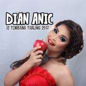 Dian Anic 12 Tembang Tarling Dangdut 2017-Dian Anic
