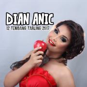 Dian Anic 12 Tembang Tarling Dangdut 2017 - Dian Anic - Dian Anic