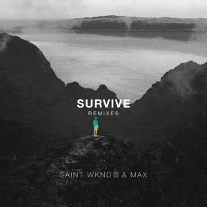 Survive (Remixes) - EP Mp3 Download