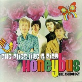 Honeybus - She's Out There