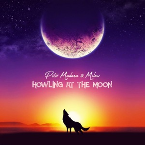 Howling at the Moon (feat. Milow) - Single Mp3 Download