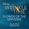 Flower of the Universe From Disney s A Wrinkle in Time Single