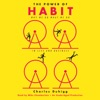 The Power of Habit: Why We Do What We Do in Life and Business (Unabridged) AudioBook Download