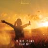 Flexus & GMO - Sunny Days artwork