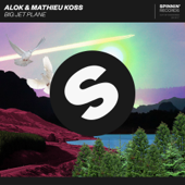 Big Jet Plane - Alok & Mathieu Koss Cover Art