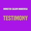Minister Calvin Marevesa - Mweya Mutsvene artwork