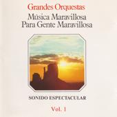 Música Maravillosa para Gente Maravillosa. Sonido Espectacular (Vol. 1)