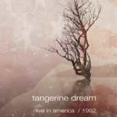 Love On a Real Train (Live) - Tangerine Dream