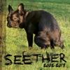 Seether - Fine Again