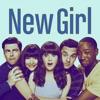 New Girl, Season 6 - Synopsis and Reviews