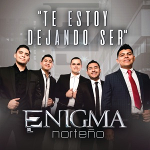 Te Estoy Dejando Ser - Single Mp3 Download
